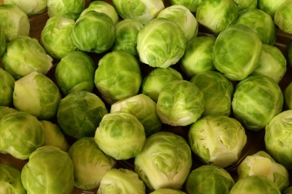 brussels-sprouts-463378_1920